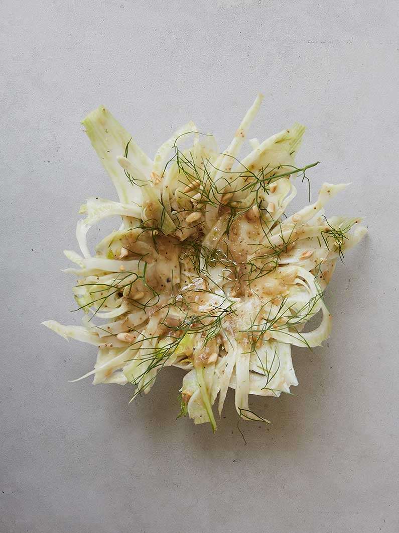 fennel salad culinary